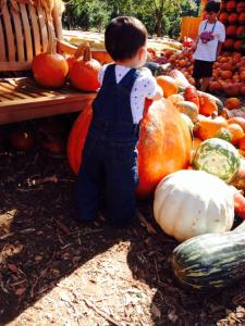 My little munchkin at the Pumpkin Village